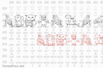 AEZ Owls for Traci Font