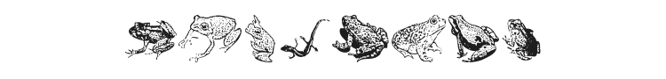 AmphibiPrint Font