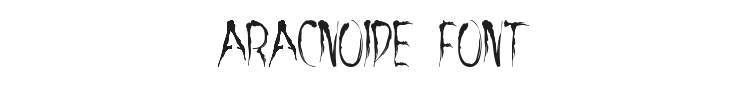 Aracnoide