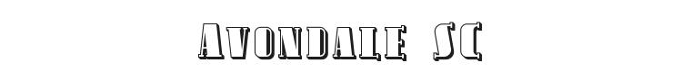 Avondale SC