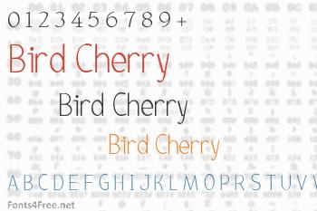 Bird Cherry Font