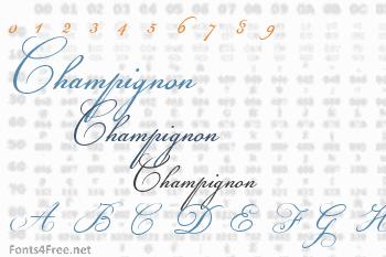 Champignon Font
