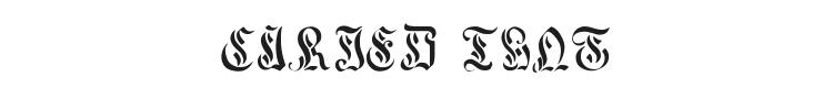 Curved Manuscript Font