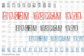 Human Brown Eye Font