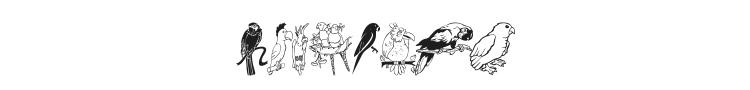 LCR Parrot Talk Font