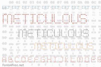 Meticulous Round Font