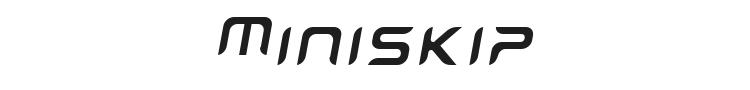 Miniskip