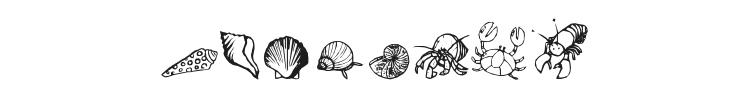 Ocean Iacy Font