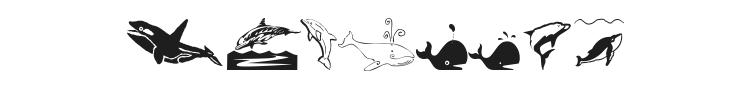 Orcas Font Preview