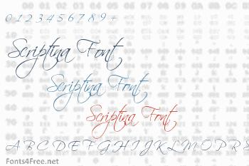 Scriptina font family.