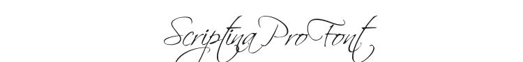Scriptina Pro Font Preview