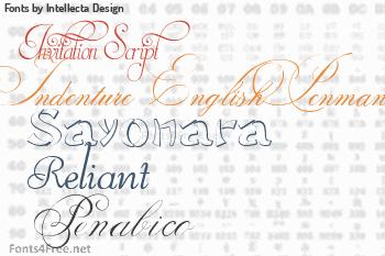 Intellecta Design Fonts