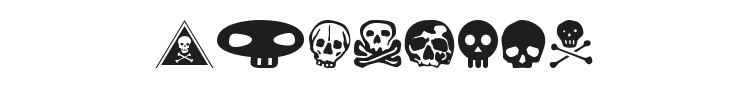 SkullBearer