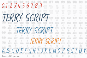 Terry Script Font