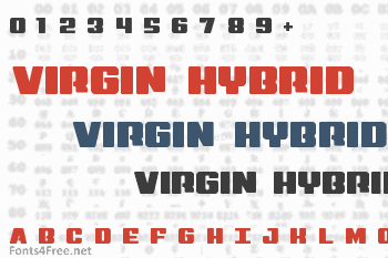Virgin Hybrid Font