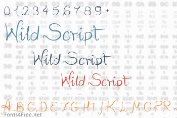 Wild Script Font