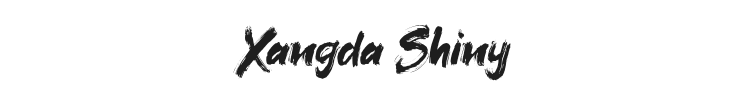 Xangda Shiny Font Preview