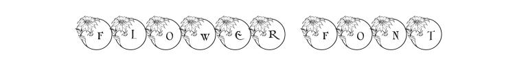 Xmas Flower 1 Font